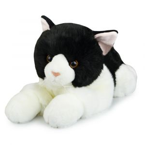 CAT BLACK FRIENDLEE (D)