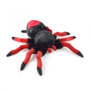 SPIDER REDBACK