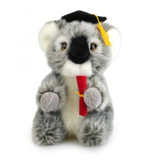 GRAD KOALA (LIL FRIENDS)