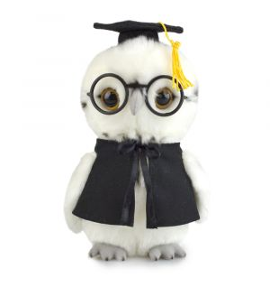GRAD OWL (LIL FRIENDS)
