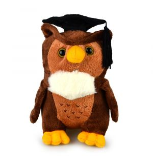 GRADUATION OWL MY BEANY (D)